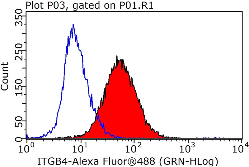 1X10^6 HeLa cells were stained with 0.2ug Integrin beta-4 antibody (Catalog No:111864, red) and control antibody (blue). Fixed with 90% MeOH blocked with 3% BSA (30 min). Alexa Fluor 488-congugated AffiniPure Goat Anti-Rabbit IgG(H+L) with dilution 1:1000.
