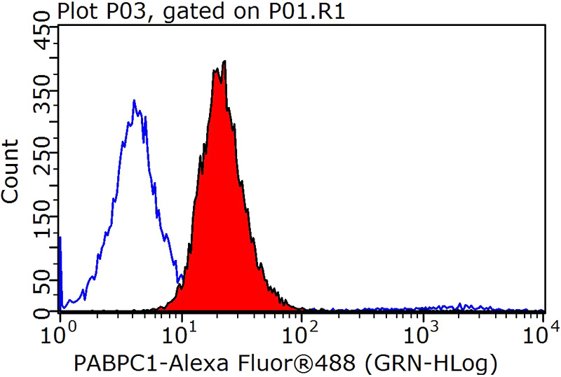1X10^6 MCF-7 cells were stained with 0.2ug PABPC1,PABP antibody (Catalog No:113474, red) and control antibody (blue). Fixed with 90% MeOH blocked with 3% BSA (30 min). Alexa Fluor 488-congugated AffiniPure Goat Anti-Rabbit IgG(H+L) with dilution 1:1000.