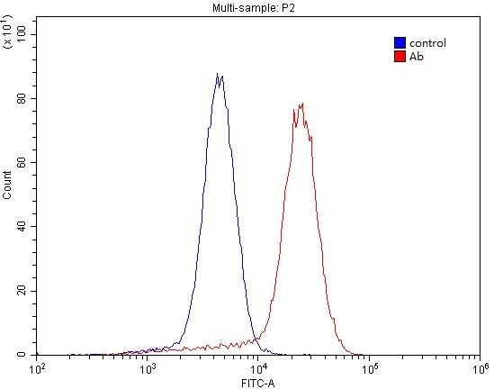 1X10^6 NCCIT cell were stained with 0.2ug NT5E,CD73 antibody (Catalog No:113396, red) and control antibody (blue). Fixed with 4% PFA blocked with 3% BSA (30 min). Alexa Fluor 488-congugated AffiniPure Goat Anti-Rabbit IgG(H+L) with dilution 1:1500.